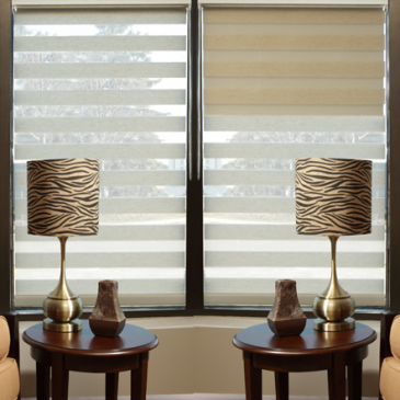 Update Your Rooms With Zebra Shades