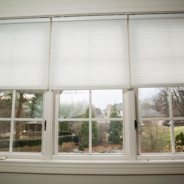 Avoid SAD By Maximizing Natural Light In Your Home This Winter