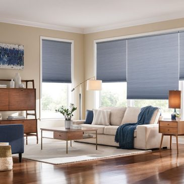 Top Shades For Your Space