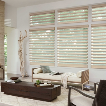 Luminescence, Privacy, Style: The Best Options in Window Treatments